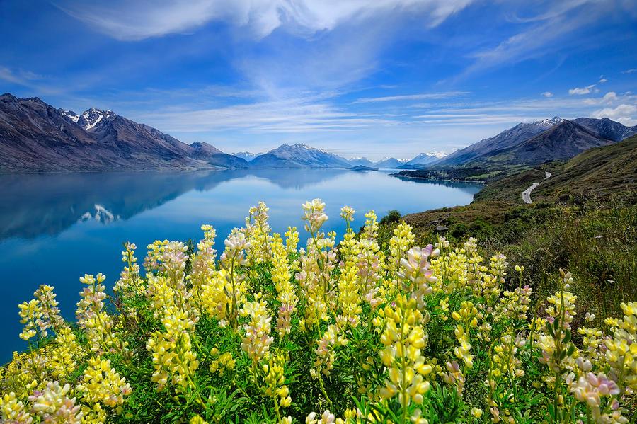 Lake Wakatipu by Michaelthien