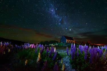 Dreamy fields by Michaelthien
