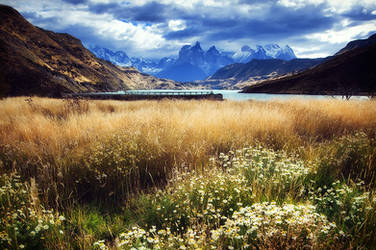 Neverland by Michaelthien