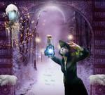 Winter Fairy land..