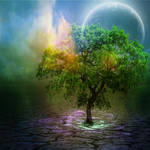 Last tree standing by shades-of-art