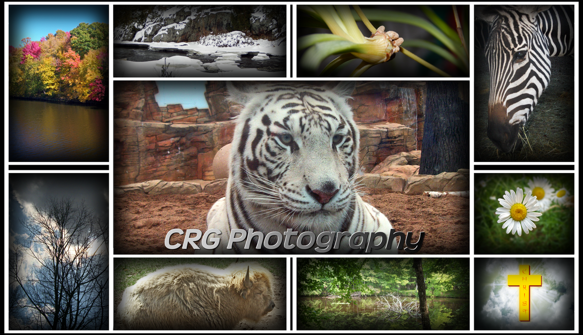 CRG Photography Collage by CRG-Free