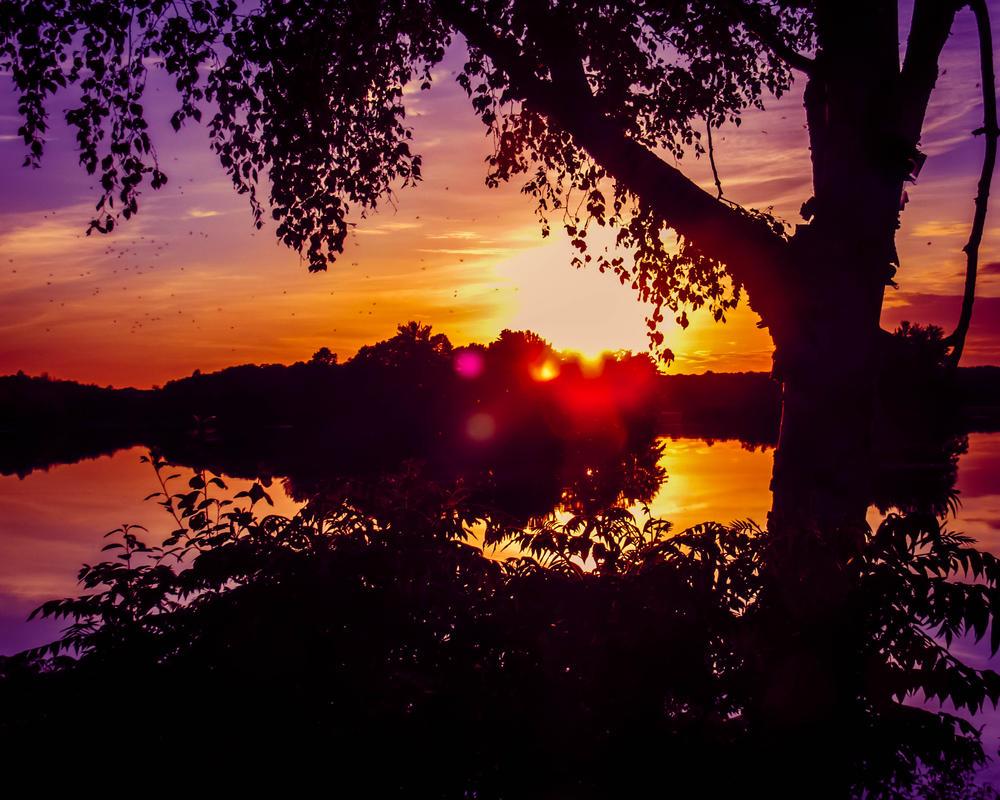 Nature S Delight Monticello Ny