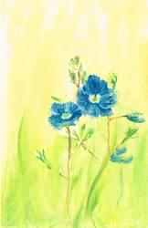 Blue Flower in Chalk by Frogsnack