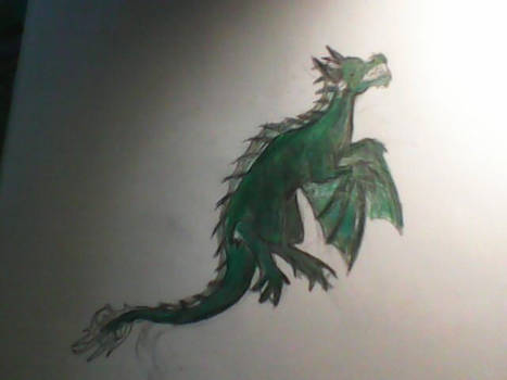 Unfinished water dragon