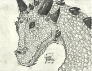 Realistic Dragon