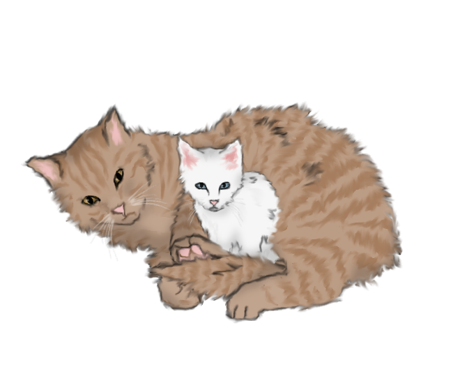 Warrior Cats Speckletail