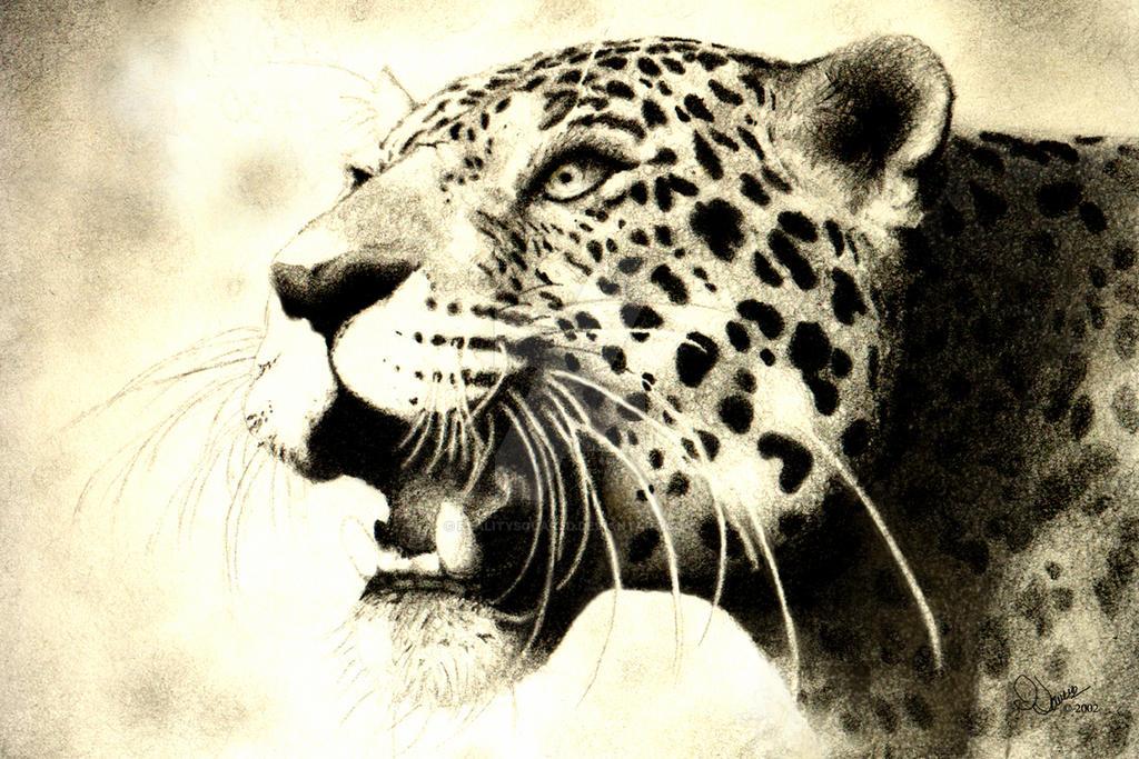 Leopard-retouch