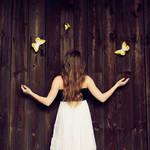 my butterflies by patrycjanna