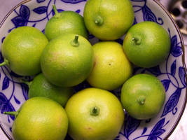 citrus mitis by bafel