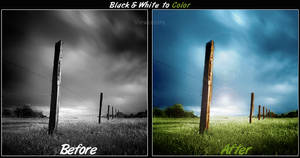 Black white to color Ground