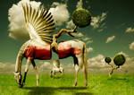 Pegasus Divided