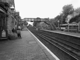 Bridgnorth Station by Skrillexia-TF
