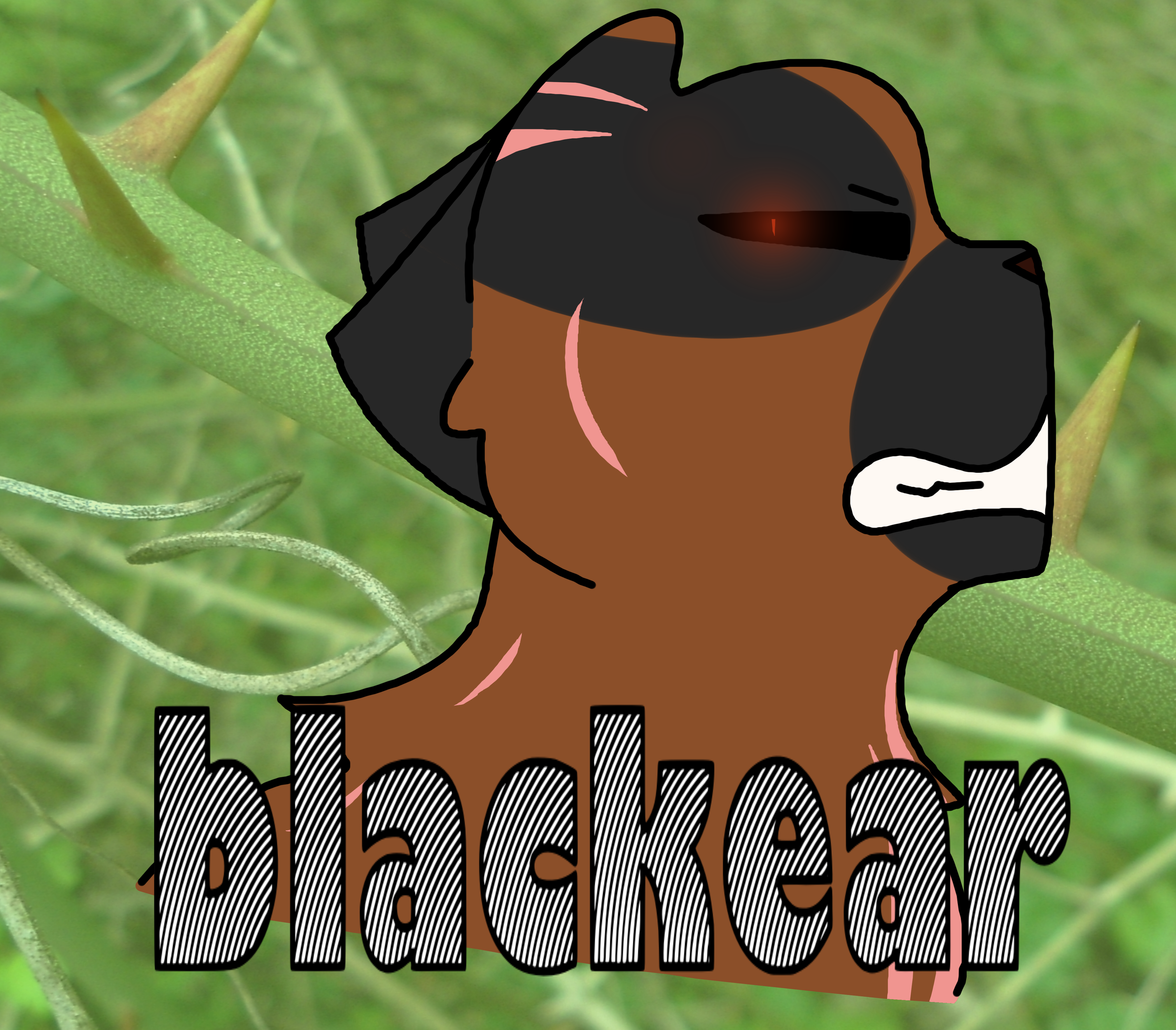 Blackear by Skystar40