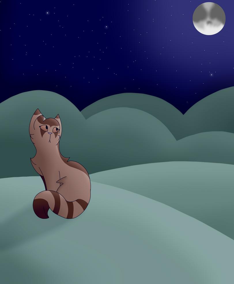 Chilly Night by Skystar40