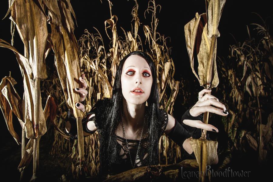 Against the Grain by Leanan-Bloodflower