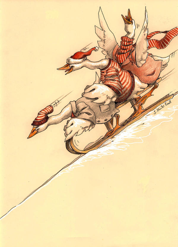 Christmas card 2008 II. by cidaq