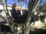 Stole my teachers chair and placed it in a treetop by JessicaYin
