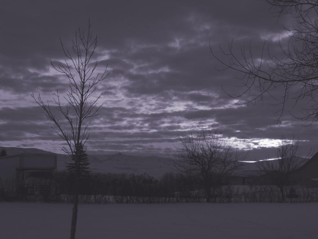 Gray Wind by nightmare061496