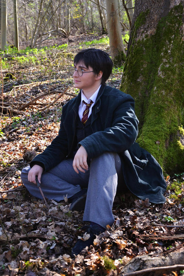 Harry Potter Cosplay - Into The Woods by HyperLittleNori