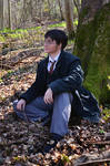 Harry Potter Cosplay - Into The Woods