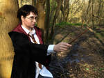 Harry Potter Cosplay - What Is Right, What Is Easy