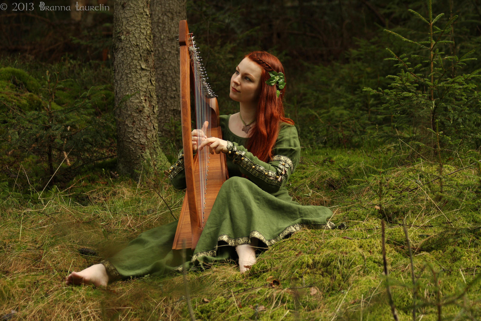 http://img01.deviantart.net/e835/i/2014/001/4/6/forest_harp_by_laurelin_photography-d70fycm.jpg
