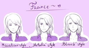 France in different styles