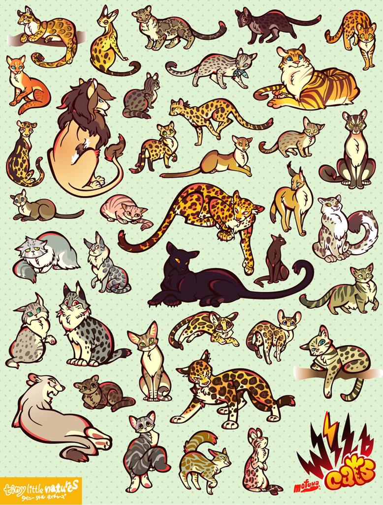 WILD CATS by mofuwa