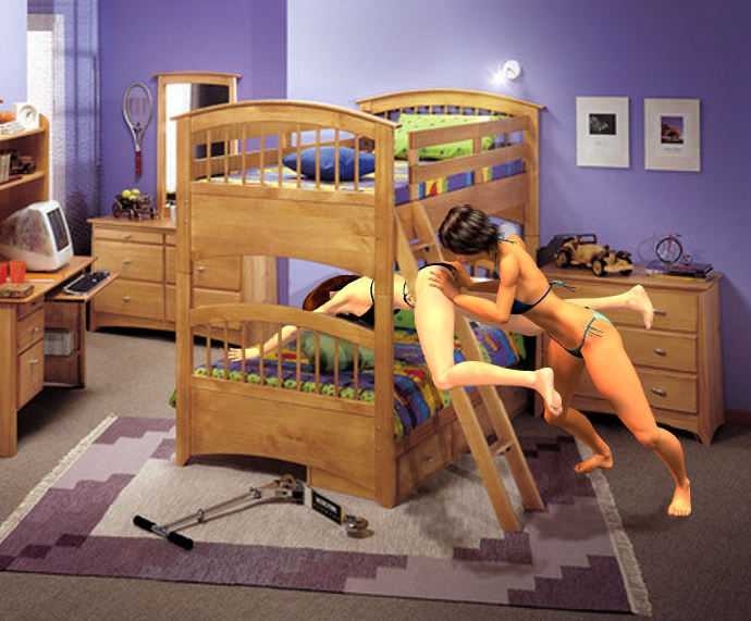Dog Bunk Beds Furniture