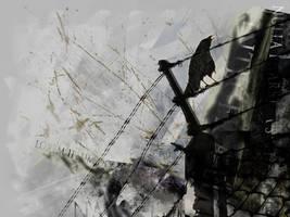 Lorem Ipsum by truefreestyle