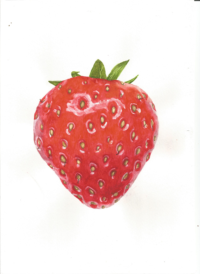Strawberry by alter-ipse-amicus