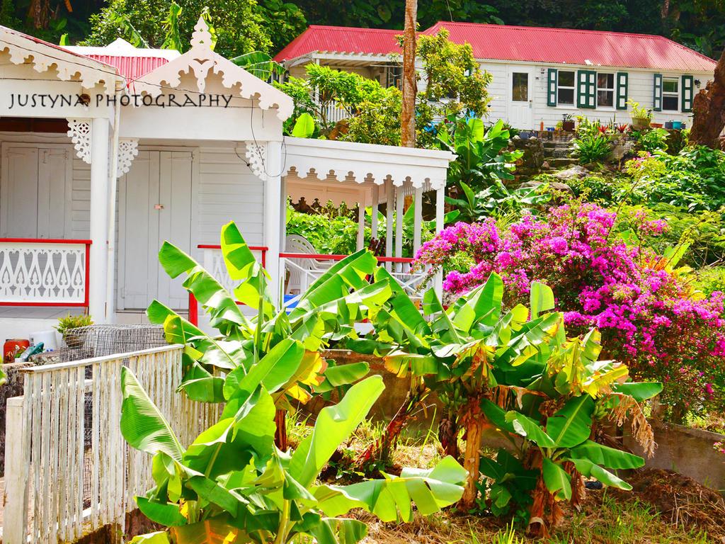 Saba houses by burcyna