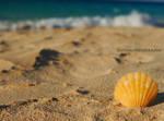 on the beach by burcyna