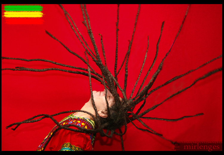 a tribute to Bob Marley v.ii by Mirlenges