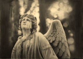 Weeping angel by stuartclark