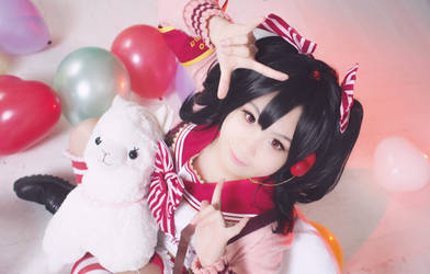 LL: Valentines Nico