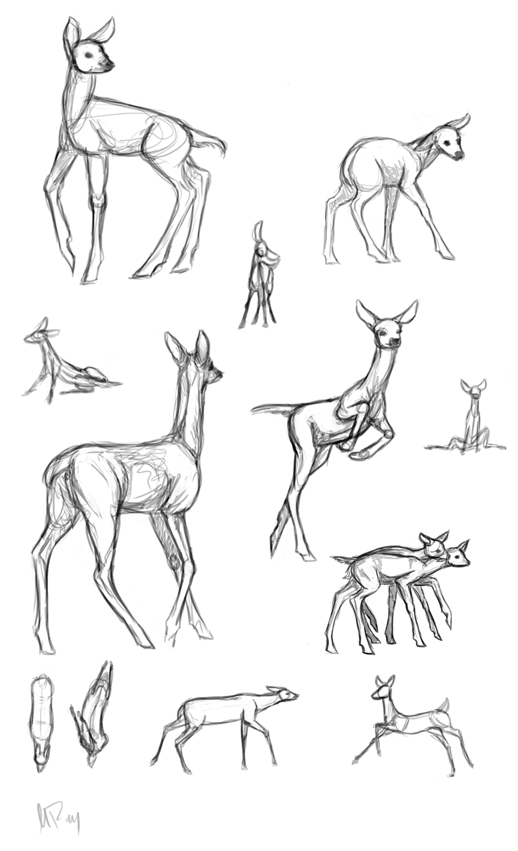 doefawn sketches by geometric harmartia