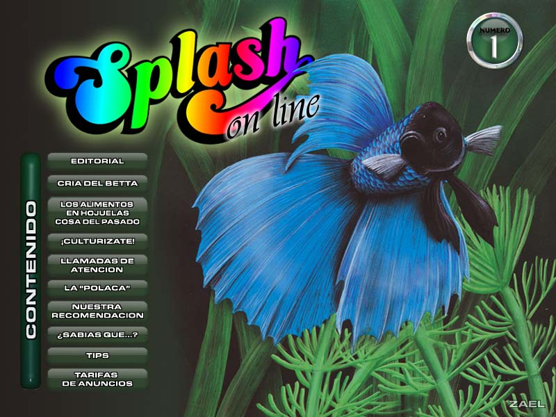 Splash on Line 1 by DrAkMa
