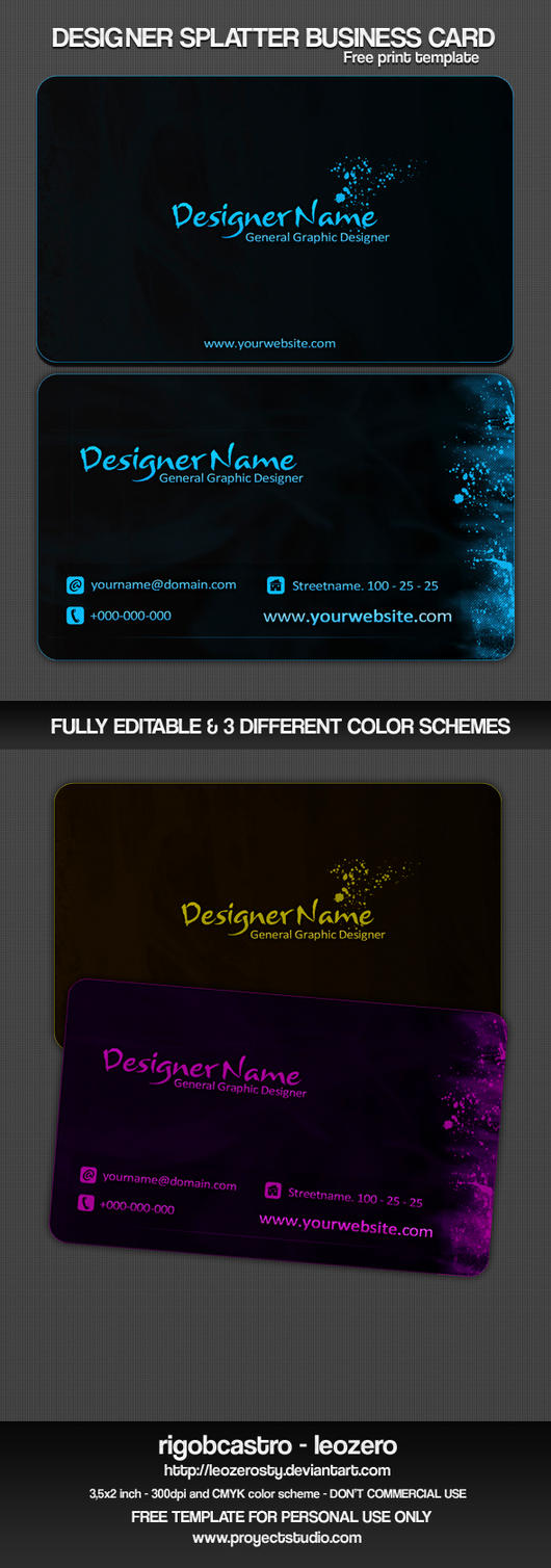 DS Business Card Template by leozerosty