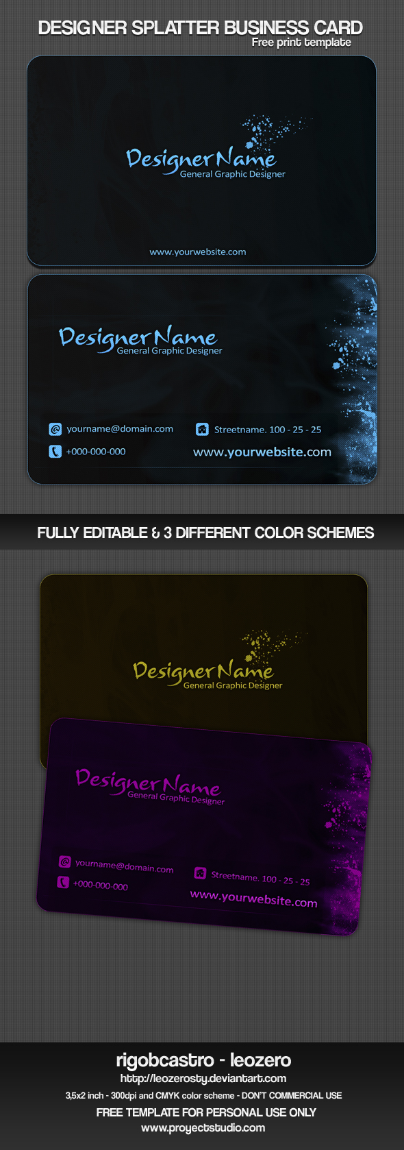 DS Business Card Template by leozerosty