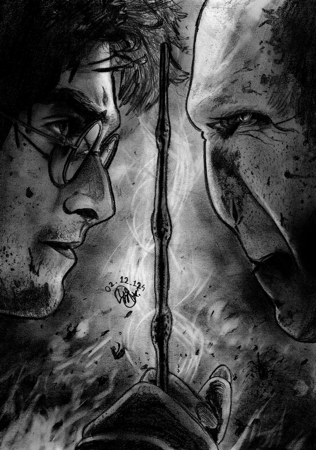 Harry vs Voldemort NEW by Williaaaaaam on deviantART