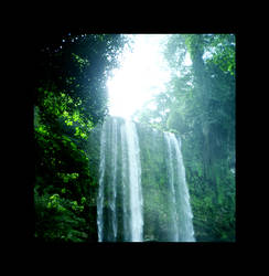 Cascade in the jungle 2... by Lobotomized