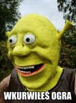 Shrek Wkurwiony