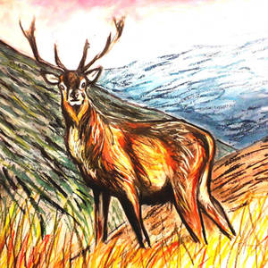 Stag (2)