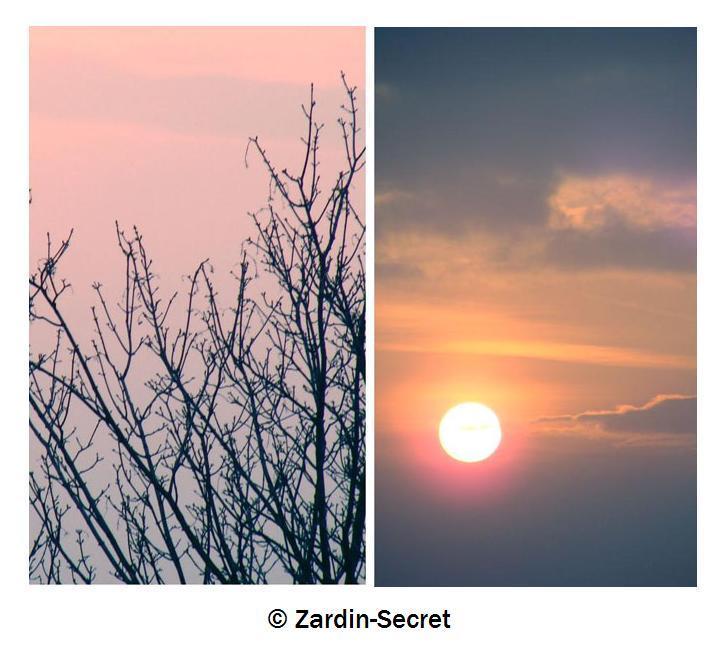 C O U C H E R by zardin-secret