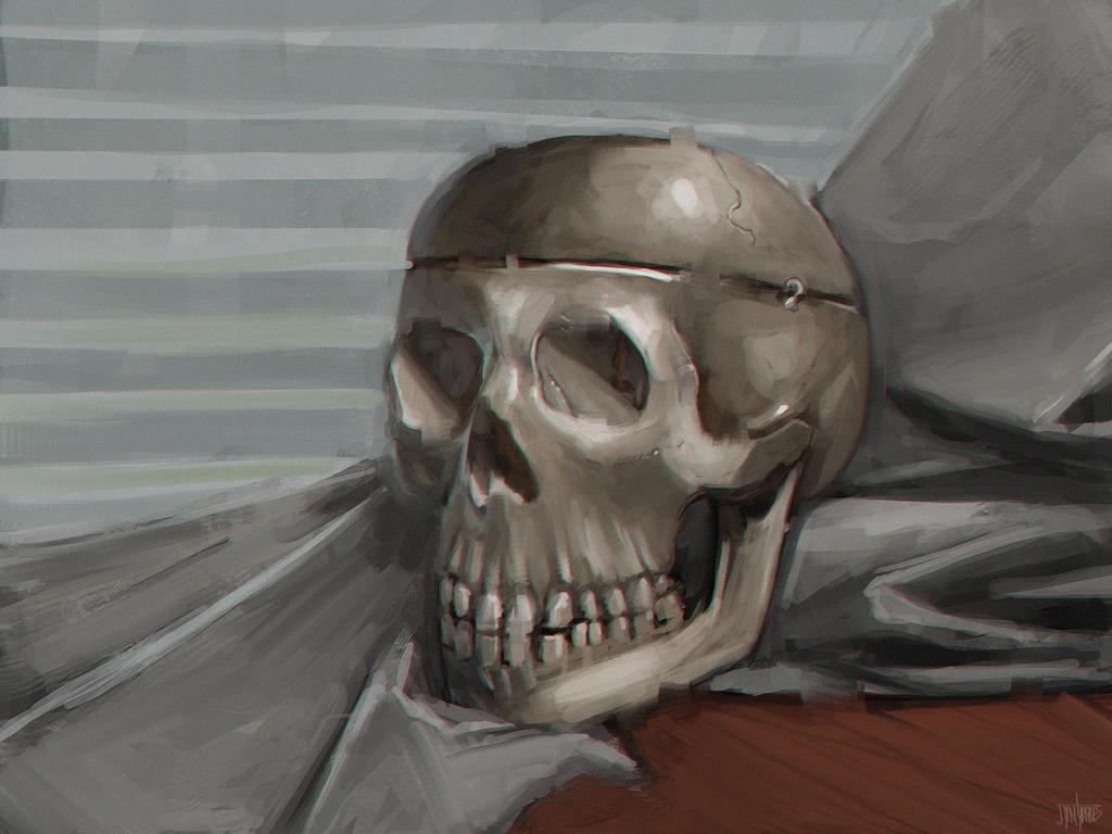 Skull Study by jontorresart