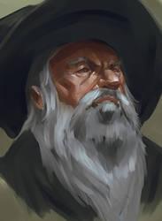 Gandalf Portrait