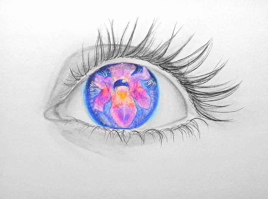 Iris by trikoloma