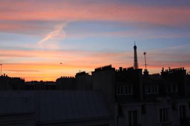 Paris' rooftops at dawn